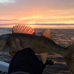 Fishing Report Mille Lacs Lake